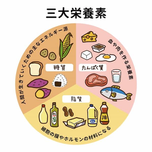 リバウンドしないダイエットに効果的な食事